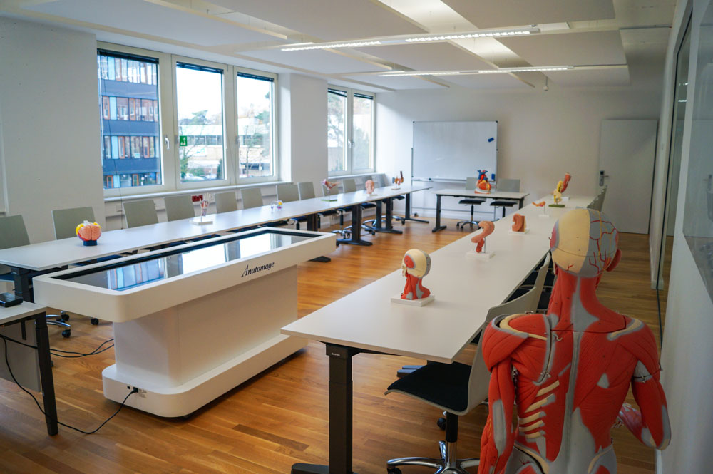 Anatomy models and virtual 3D anatomy and dissection table