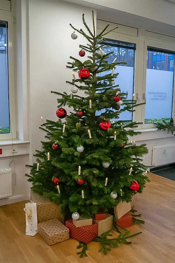 Christmas tree at UMCH Campus in Hamburg